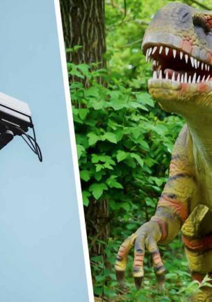 Хозяйка двора сняла на видео динозавра. Глядя на бегущее нечто с короткими руками, другого объяснения не найти