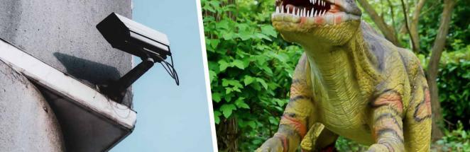 Хозяйка двора сняла на видео динозавра. Глядя на бегущее нечто с короткими руками, другое объяснение не найти