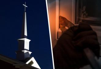 Вор обокрал церковь, и карма была божественной. Вышел косплей на «Побег из Шоушенка» с финалом «Винни Пуха»