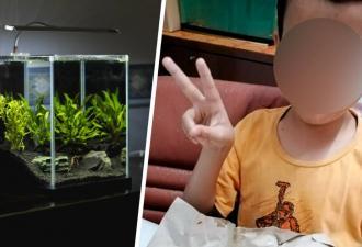 Мама оплакивала аквариумную рыбку, но сын решил подбодрить её ужином. Лучше бы она не знала главный ингредиент