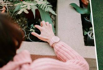 Старушка не понимала, почему на клумбе никак не вырастут цветы. Причина уходила на метры под землю