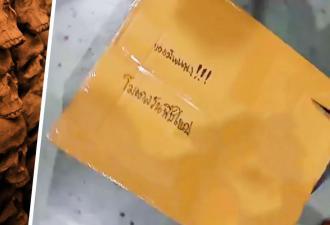 Анимешник отправил фигурку и разблокировал фобию почтальонов. Ведь когда игрушка ожила, было уже не до шуток