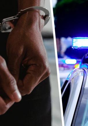 Копы поймали карманников, но вопросы у офицеров не к ним. А к их четырёхруким сообщникам, которых не посадить