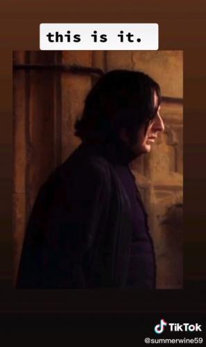 Сын оглянулся на мать и понял, что его зачислили в Хогвартс. Ведь за спиной сидел сам Северус Снегг