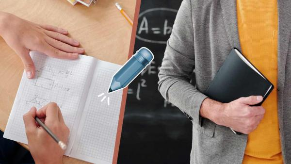 «Деление пиццы, сумма просмотров в TikTok». Как подружить школьника с логикой и арифметикой?