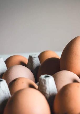 Курица удивила хозяйку двойным яйцом. Она снесла природный киндер-сюрприз, в который без видео трудно поверить