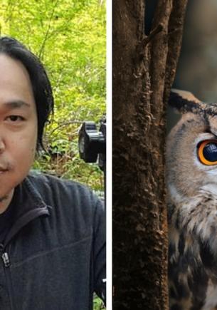 На фото из леса притаилась птица, но найти её смогут не все. Награда для самых зорких — письмо из Хогвартса