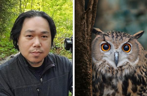 На фото из леса притаилась птица, но найти её смогут не все. Награда для самых зорких - письмо из Хогвартса