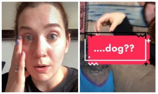 Блогерша показала свою собаку, и никто не может точно определить её породу. Кажется, пса создали в лаборатории