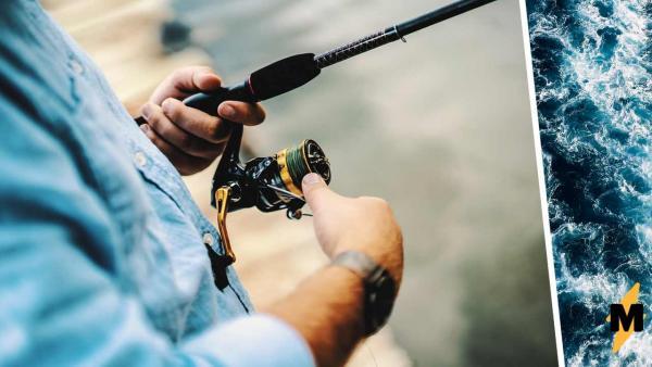 В Австралии рыбаки увидели улов и не поверили глазам. Этот монстр приплыл не становиться ужином, а есть его