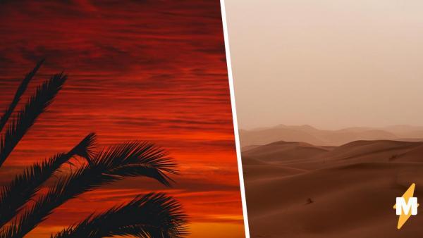 Это Марс? Нет, теперь так выглядит Алжир, а фото и видео оттуда перенесут вас на Красную планету прямо из дома