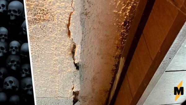 Отец жаловался на протекающую крышу, но никто не спешил её заделывать. Увидев, что с неё капает, понял почему
