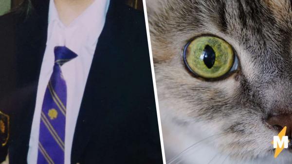 Писательницу дразнили в школе кошкой и не зря. Дело в её особенных глазах, взгляд которых не забудешь никогда