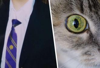 Писательницу дразнили в школе кошкой, и неспроста. Дело в её особенных глазах, взгляд которых сложно забыть