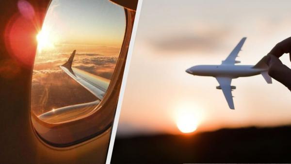 Пассажирка сфоткала крыло самолёта, и здравствуй, фобия. Баг в окне - последнее, что хочется увидеть до взлёта