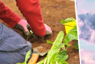 Муж взял у жены найденную в саду железку и начал счищать с неё грязь ножом. Увидев это, сапёры оцепили их дом