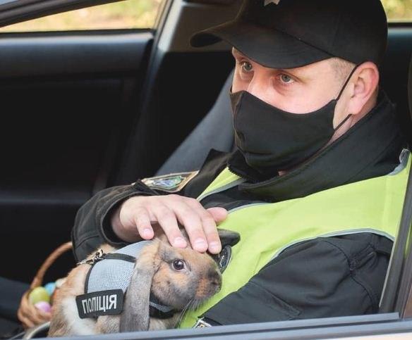 В Днепре на стражу порядка готов выйти новый полицейский. Перед его обаянием не устоит ни один преступник