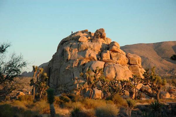 Туристка застряла в пустыне и провела 96 часов в +33°C без еды и воды. Беар Гриллс, даже не пытайся повторить