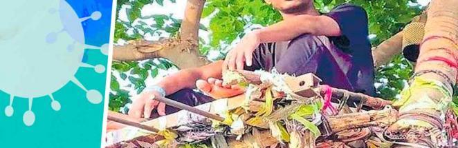 Студент забрался на дерево, но опомнился лишь 11 дней спустя. Нет, это не челлендж — так он спасал свою семью