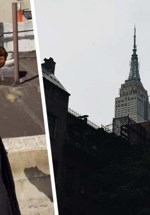 Блогер переехал в Нью-Йорк, а попал в «Пункт назначения». С травмы руки игра на выживание только началась