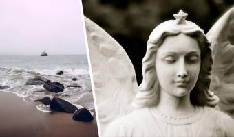 Турист нашёл на пляже странного морского монстра и признал в нём ангела. Зря спешил — на фото тот ещё дьявол