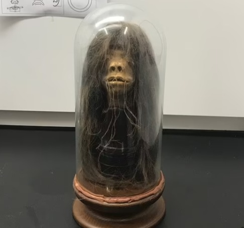 Зрители смеялись над нелепой куклой из хоррора, и зря.