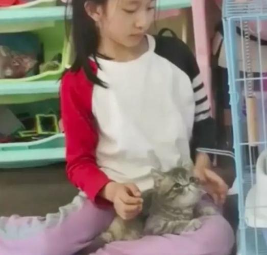 Мама взяла кота с улицы и больше не притронется к животным. За доброту её дочь расплатилась лысиной