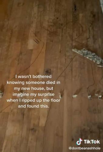 Студентка сняла ковёр и, привет, новая фобия. Эти линии на полу не захотел бы увидеть в своём доме никто