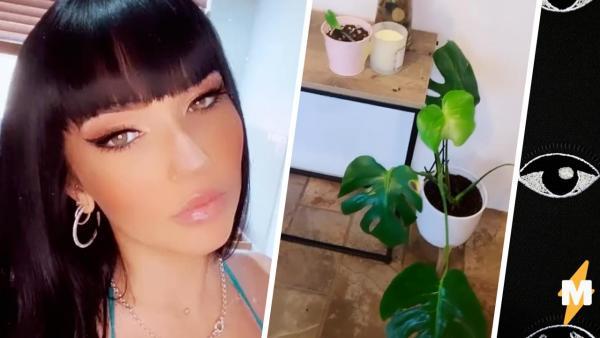 Блогерша не знала, почему вянет её цветок. Разглядывая листья, она заметила покемона, смотрящего ей в душу