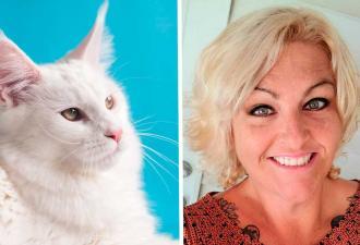 Таксидермистка сделала чучело кота, а итог — мем «Бежит, орёт». Упоротый лис, принимай новенького