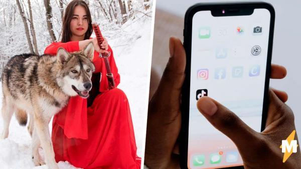 Блогерша завела волчицу в квартире и ловит хейт. Но погодите, её хорошая девочка воспитаннее многих пёселей