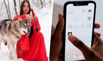 Россиянка завела волчицу в квартире и ловит хейт. Но погодите, её хорошая девочка воспитаннее многих пёселей