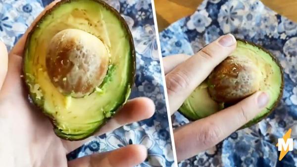 Можно ли достать косточку из авокадо одной рукой за минуту? Кулинарка на видео доказала - проще простого