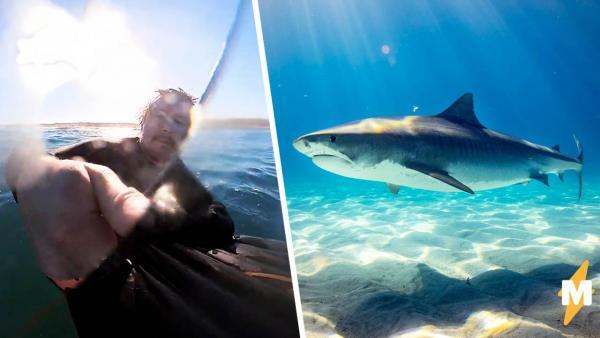 Серфингист ждал волну, а получил голодную акулу. Попробуйте сосчитать запикивания на видео с его побегом