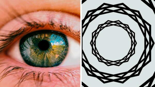 Поздравляем, мы видим то, чего нет. Учёные создали иллюзию, ломающую глаза. Вы не сразу поймёте, где подвох