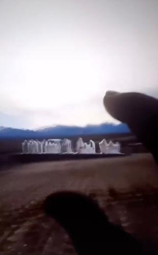 Жуткие статуи в Google Earth напугали блогера (и зря). Разгадка показала: к таким артам жизнь его не готовила