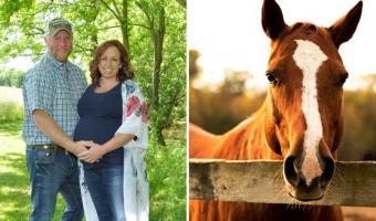 «Время для мема», — решил конь и влез в кадр к супругам. Так они узнали, почему не стоит фоткаться с лошадьми