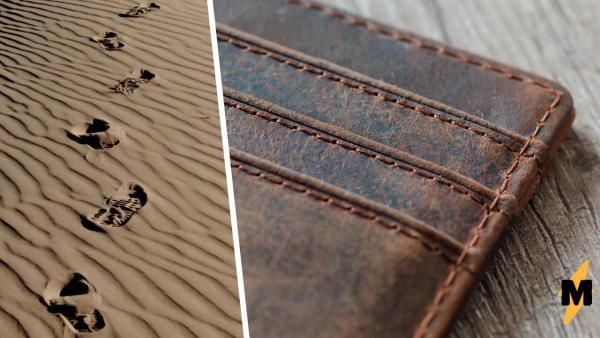 На пляже нашли кошелёк, но лучше его не трогать. Бумажник делает клац-клац — так шутит природа (жестко)