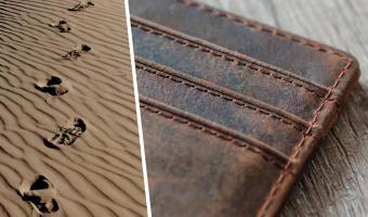 На пляже нашли кошелёк, но лучше его не трогать. Бумажник делает клац-клац — так шутит природа (жёстко)