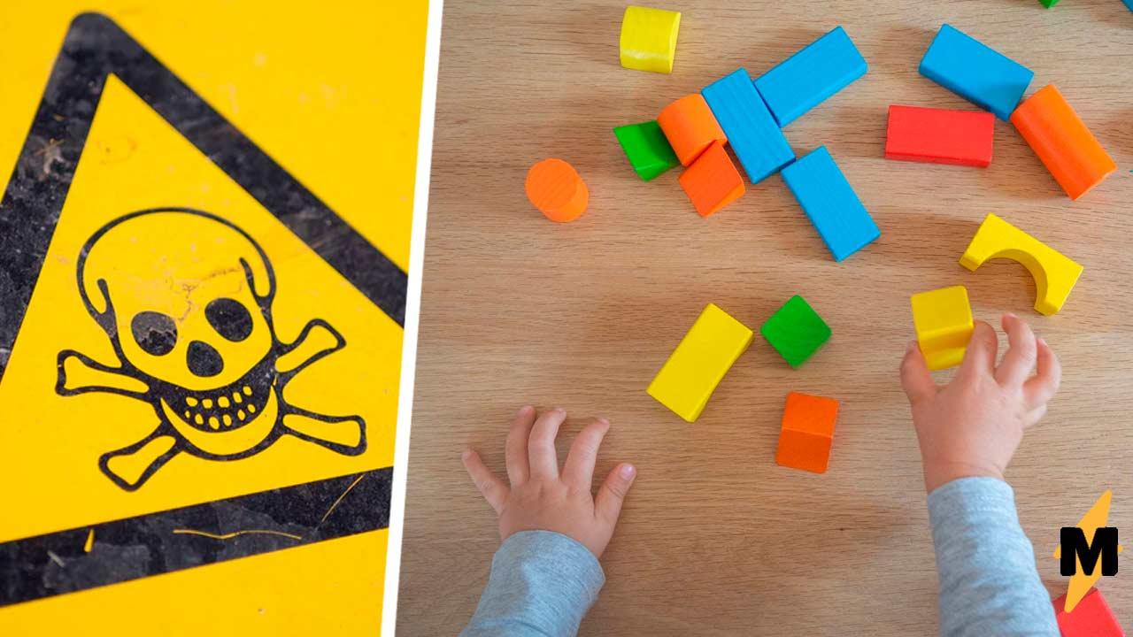 Девочка залезла в корзину с игрушками и попала в хоррор. Одна из них была живая и на развлечения не настроена
