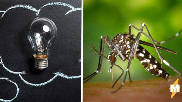 Хитрец придумал, как снизить вероятность комариных укусов на 65%. Для этого нужно снять кроссовки