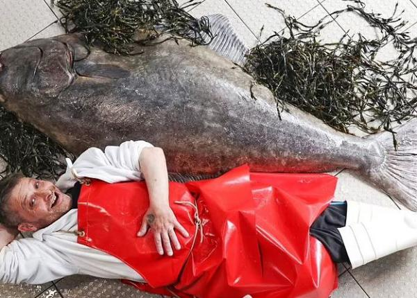 Рыбак закинул удочку, а на крючок клюнул Годзилла. Фото ломает подводный мир — «рыба моей мечты» больше нас