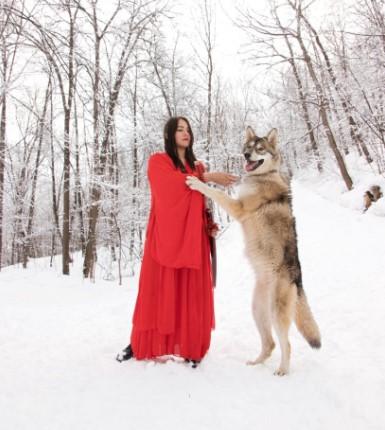 В сторону россиянки, живущей с волком, льётся хейт, и зря. Ведь её питомец воспитан куда лучше многих пёселей