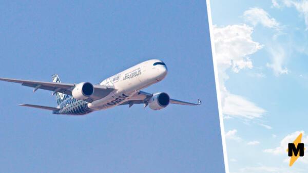 Что известно о крушении самолёта Ан-26 на Камчатке. МЧС нашли обломки судна недалеко от посёлка