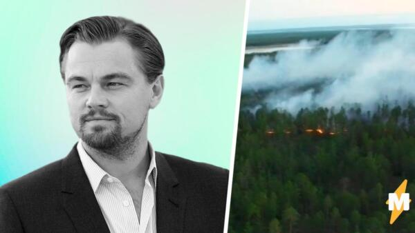 Министерство экологии Якутии отказалось от помощи Леонардо Ди Каприо. С пожарами они справятся сами