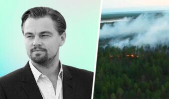 Власти Якутии отказались от помощи Леонардо Ди Каприо. С пожарами они справятся сами