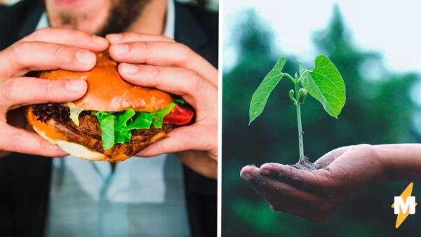 Брутальные мужчины-мясоеды убивают планету, потому что не хотят быть вегетарианцами