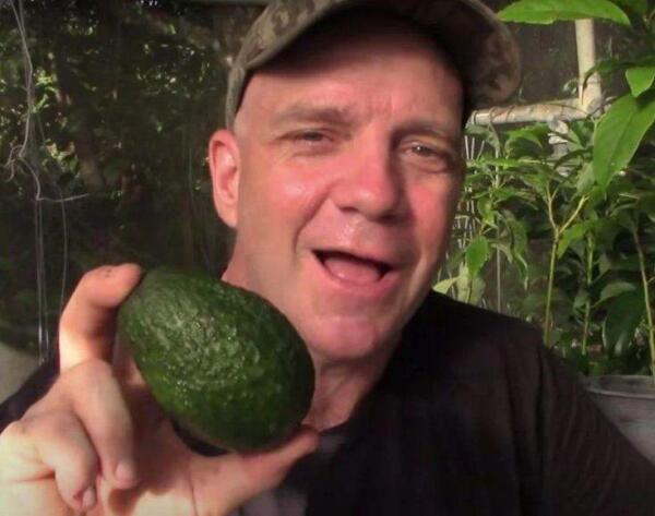 Посадил авокадо — получил фейл. Фермер уверен, из косточки никогда не вырастет вкусный плод