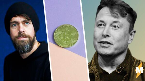 Илон Маск о криптовалюте: основные выводы из твитов с Джеком Дорси