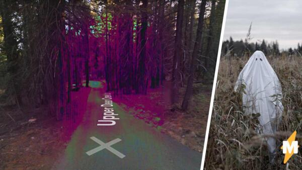 Пользователь Google Карты обнаружил пугающий участок леса странного цветаПорта